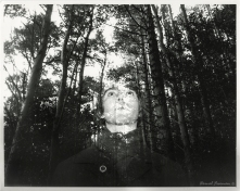 Trace 35mm Film